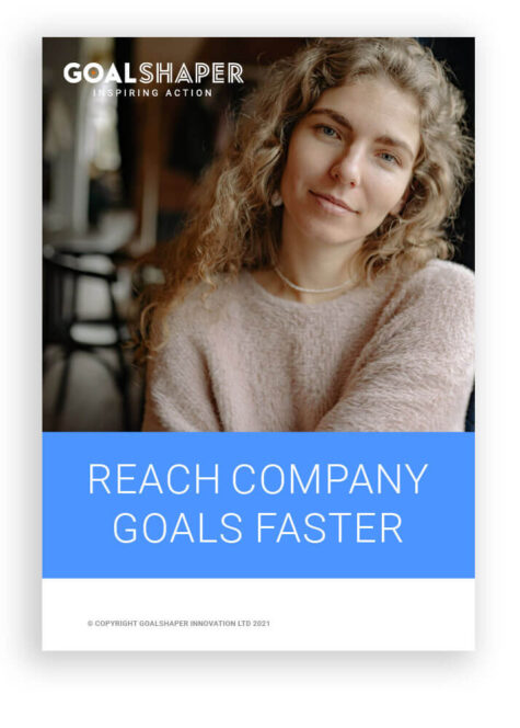 Reach Company Goals Faster E-book